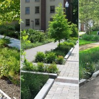 Sustainable Stormwater Management Consulting